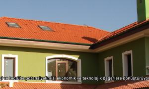 manset-yesil